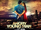 Angry Young Man (2014)