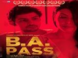 B. A. Pass (2013)