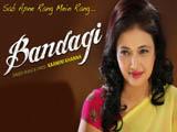 Bandagi (2014)