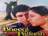 Bheegi Palkein (1982)