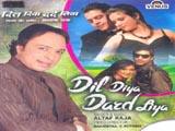 Dil Diya Dard Liya (Album) (2010)