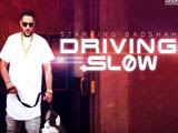 Driving Slow (2016)