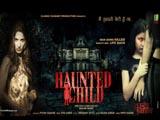 Haunted Child (2013)