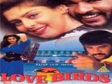 Love Birds (1996)