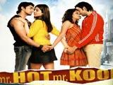 Mr. Hot Mr. Kool (2007)