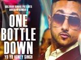 One Bottle Down (2015)