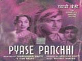 Pyase Panchhi (1961)