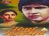 Teri Kasam (1982)