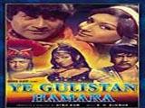 Ye Gulistan Hamara (1972)