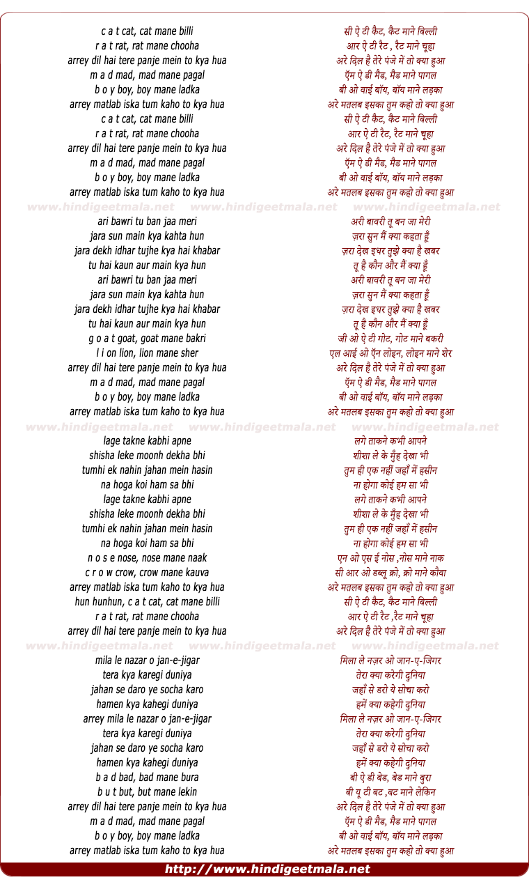 lyrics of song C A T Cat Mane Billi