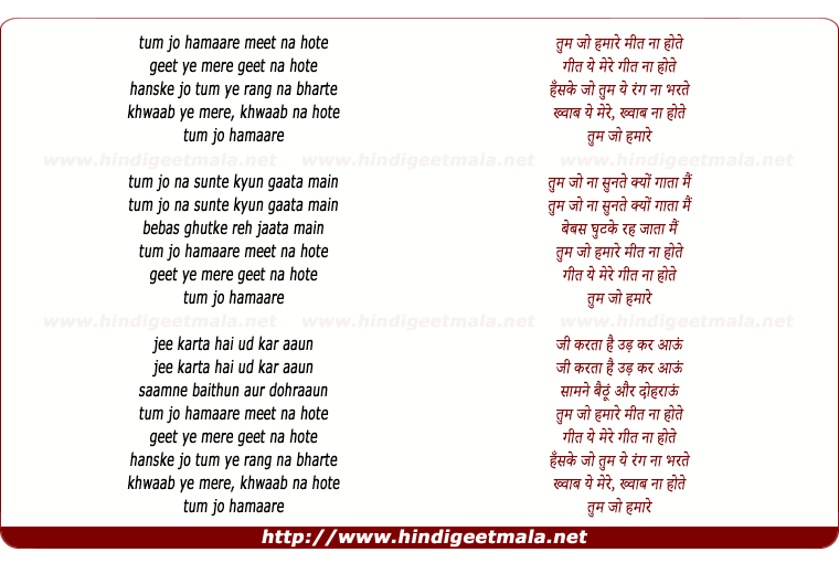 lyrics of song Tum Jo Hamare Meet Na Hote