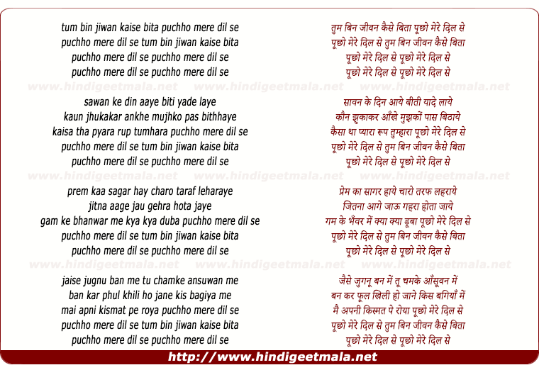 lyrics of song Tum Bin Jeewan Kaisa Beeta, Puchho Mere Dil Se