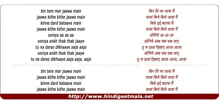 lyrics of song Bin Tere Mar Jaawaan Main