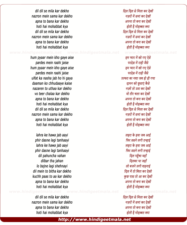 lyrics of song Dil Dil Se Mila Kar Dekho (Male Version)