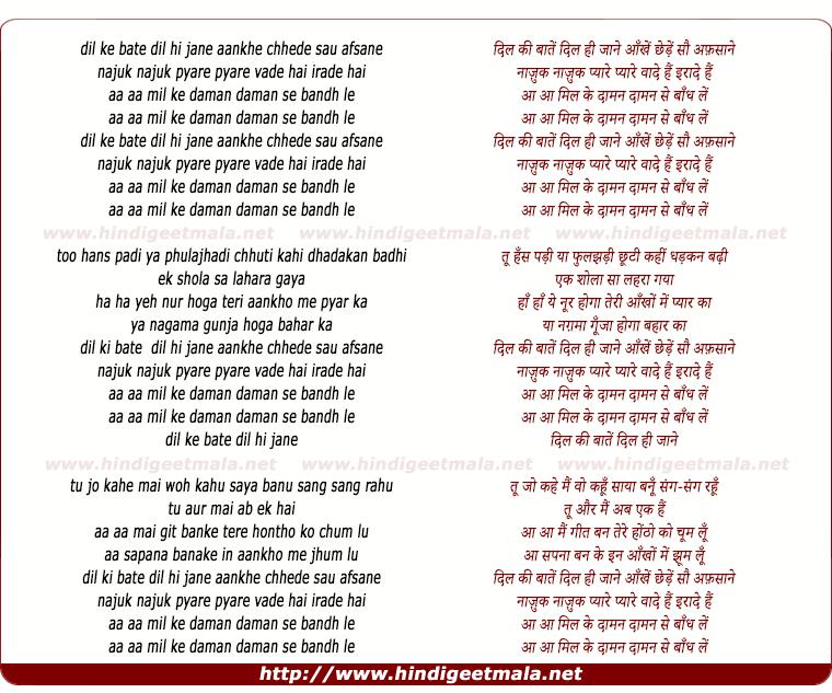 lyrics of song Dil Kee Bate Dil Hee Jane