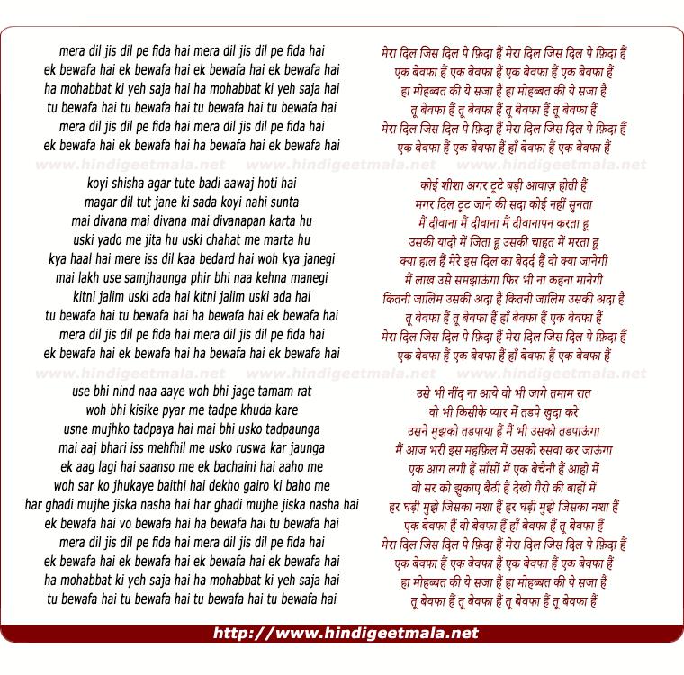 lyrics of song Ek Bewafa Hai Ha Bewafa Hai