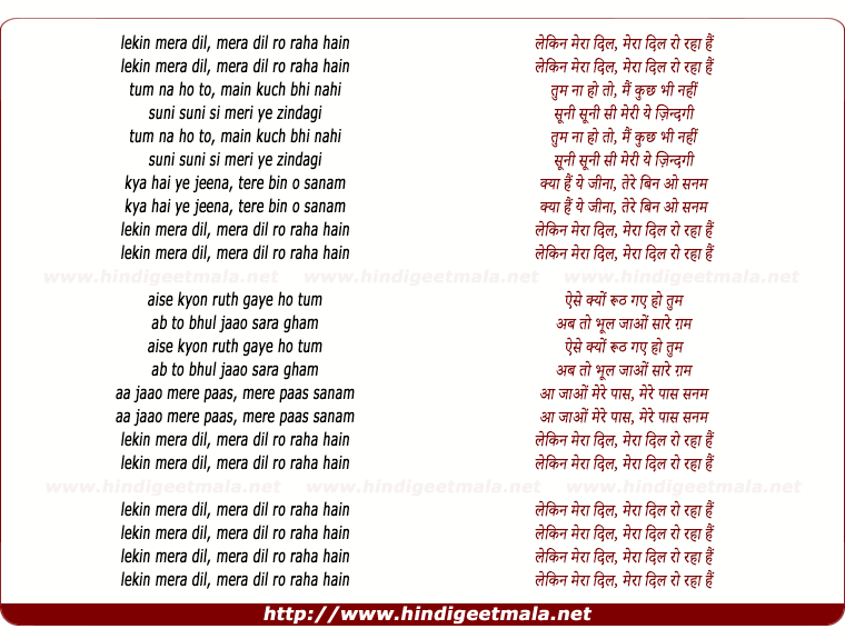 lyrics of song Lekin Mera Dil (Remix)
