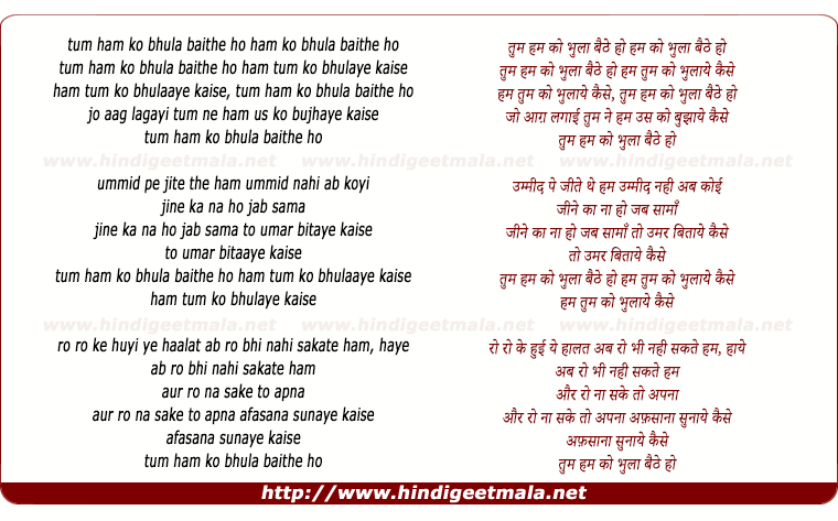 lyrics of song Tum Ham Ko Bhula Baithe Ho