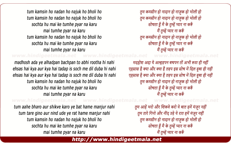 lyrics of song Tum Kamsin Ho, Nadan Ho, Nazuk Ho, Bholi Ho