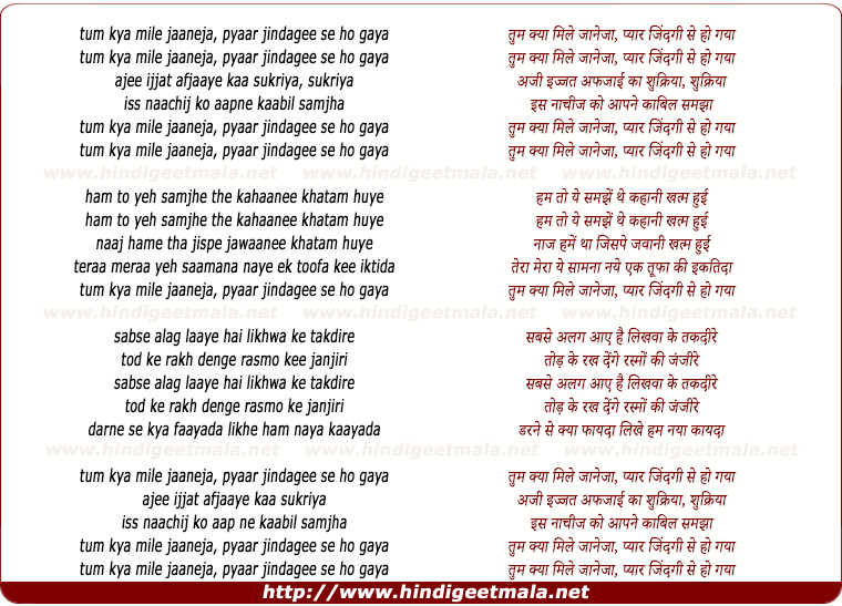 lyrics of song Tum Kya Mile Jaaneja Pyar Jindagee Se Ho Gaya