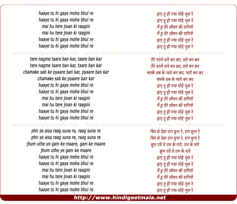 lyrics of song Haae Tu Hi Gayaa Mohe Bhul Re