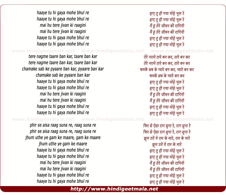 lyrics of song Haye Tu Hi Gayaa Mohe Bhul Re