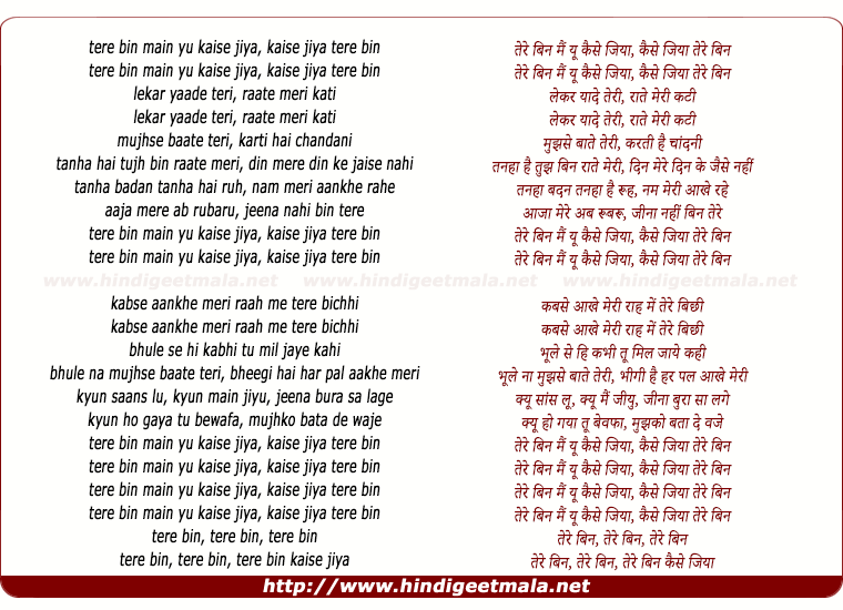lyrics of song Tere Bin Main Yu