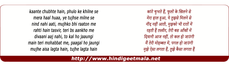 lyrics of song Main Teri Mohabbat Me Pagal Ho Jaaunga