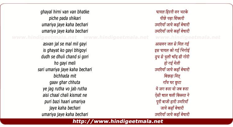 lyrics of song Ghayal Hirni Van Van Bhatke