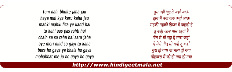 lyrics of song Tum Nahi Bhulte Jahan Jayoon, Haye Mai Kya Karu