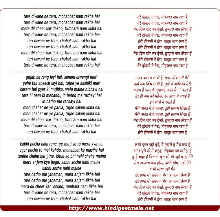 lyrics of song Tere Deewane Ne Tera Mohhabat Naam Rakha Hai
