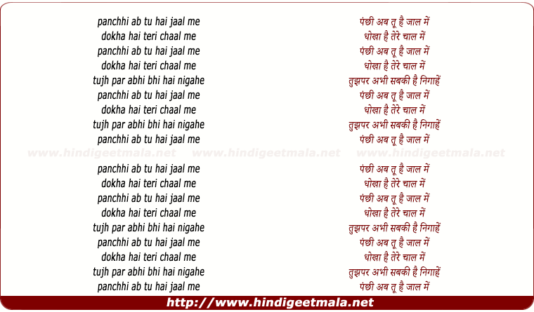 lyrics of song Panchhi Ab Tu Hai Jaal Me