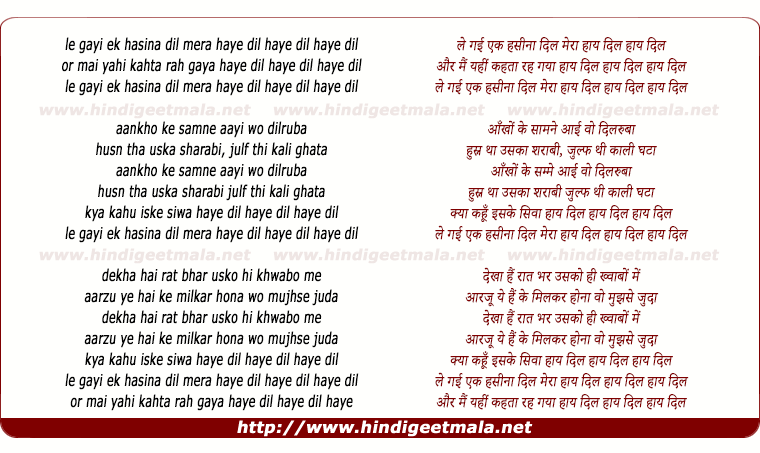 lyrics of song Le Gayi Ek Haseena Dil Mera Haye Dil Haye Dil