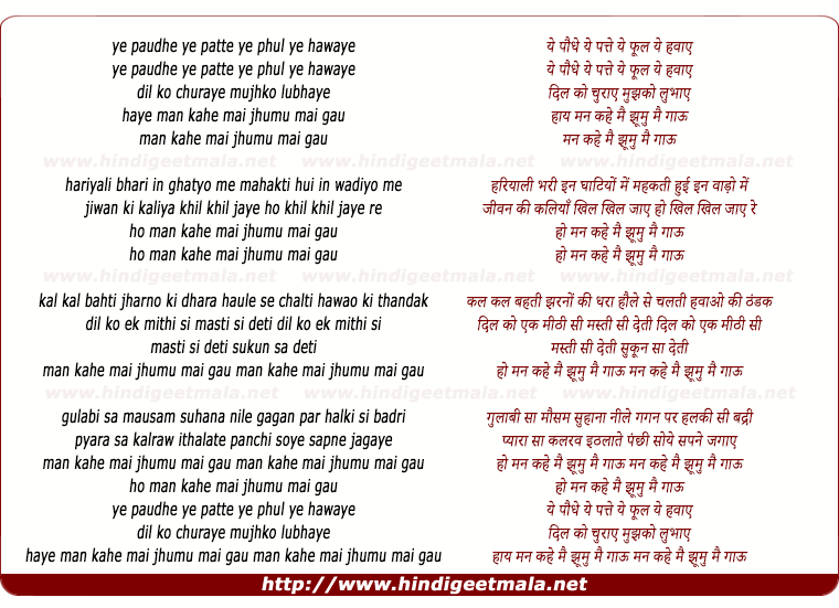 lyrics of song Ye Paudhe Ye Patte Ye Phool Ye Hawaye