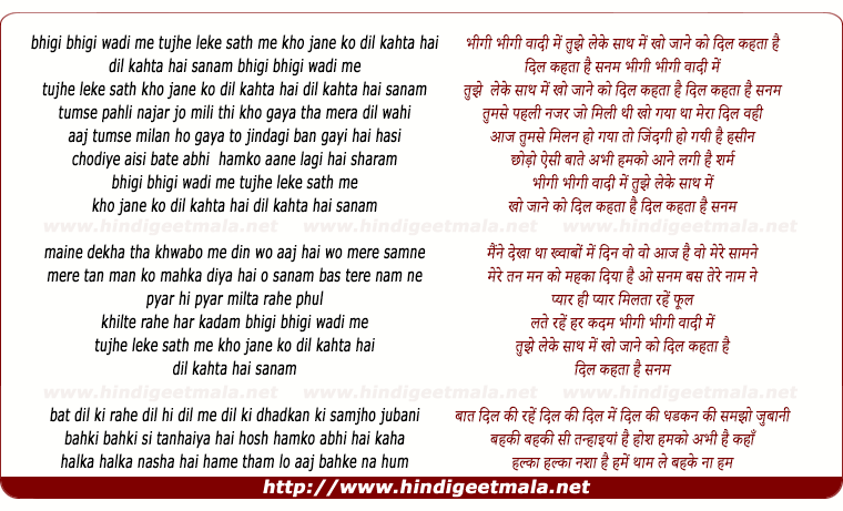 lyrics of song Bheegi Bheegi Waadi Me Tujhe Leke Sath Chale