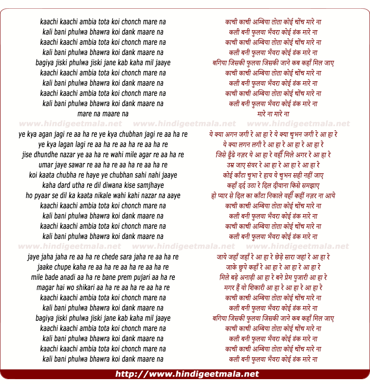 lyrics of song Kachhi Kachhi Ambia