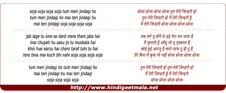 lyrics of song Tum Meri Zindagi Ho
