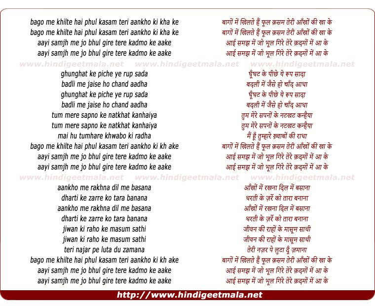 lyrics of song Bagho Me Khilte Hai Phool