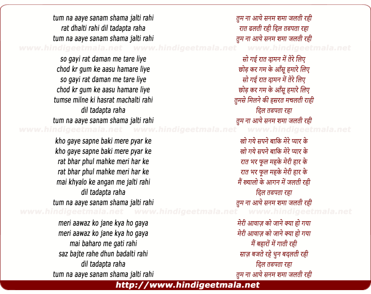 lyrics of song Tum Na Aaye Sanam Shama Jalti Rahi