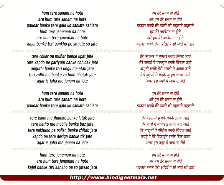 lyrics of song Hum Tere Sanam Na Hote