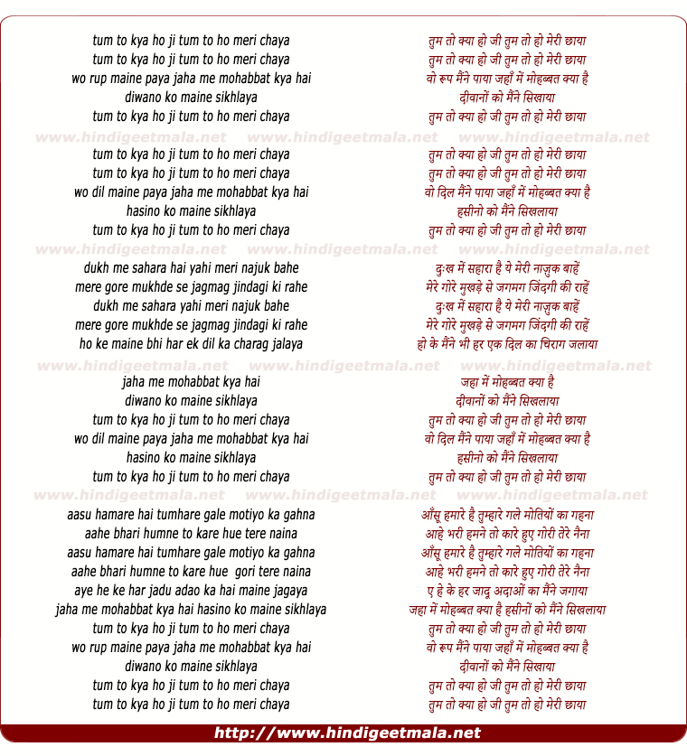 lyrics of song Tum To Kya Ho Ji Tum To Ho Meri Chhaya