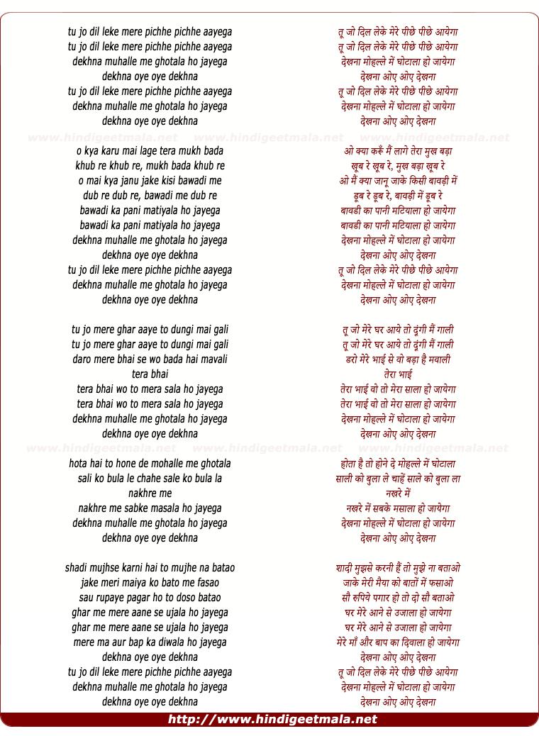 lyrics of song Tu Jo Dil Leke Mere Piche Aayega