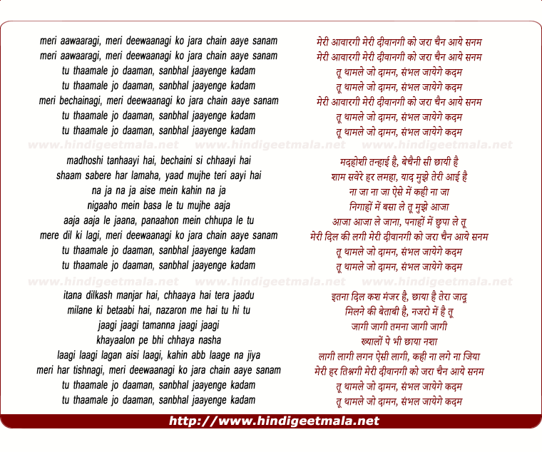 lyrics of song Meri Aawargi (Remix)