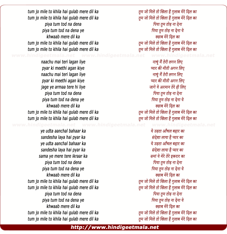 lyrics of song Tum Jo Mile To Khila Hai Gulab Mere Dil Ka