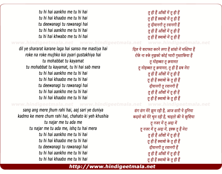 lyrics of song Tu Hi Hai (Remix)