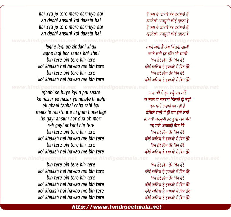 lyrics of song Bin Tere (Remix)