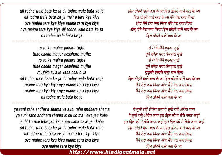 lyrics of song Dil Todnewale Bata Ke Ja