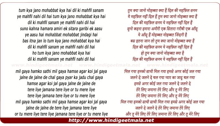 Tum Mera Hai Sanam Tum Mera Humdam Hindi Song: तुम क्या जानो मोहब्बत क्या हैं