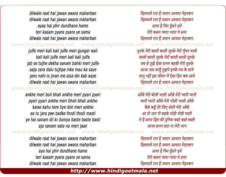 lyrics of song Dilwale Raat Hai Jawan