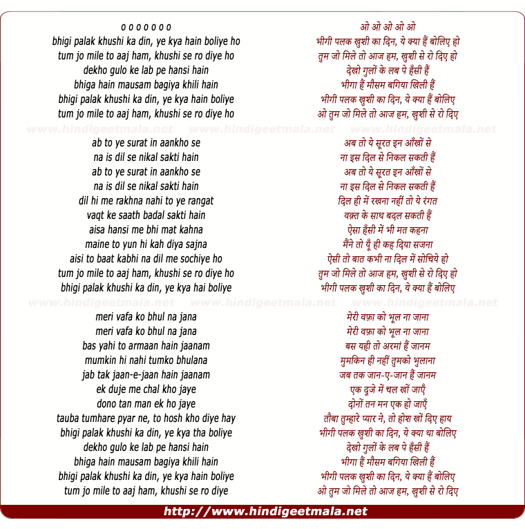 lyrics of song Bheegi Palak (Duet)